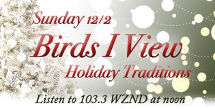 Birds-I-View: Holiday Edition